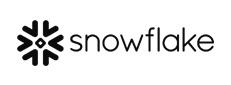 Snowflake 231x85template.jpg