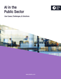 ai-public-sector-cover