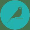 dataiku_bird