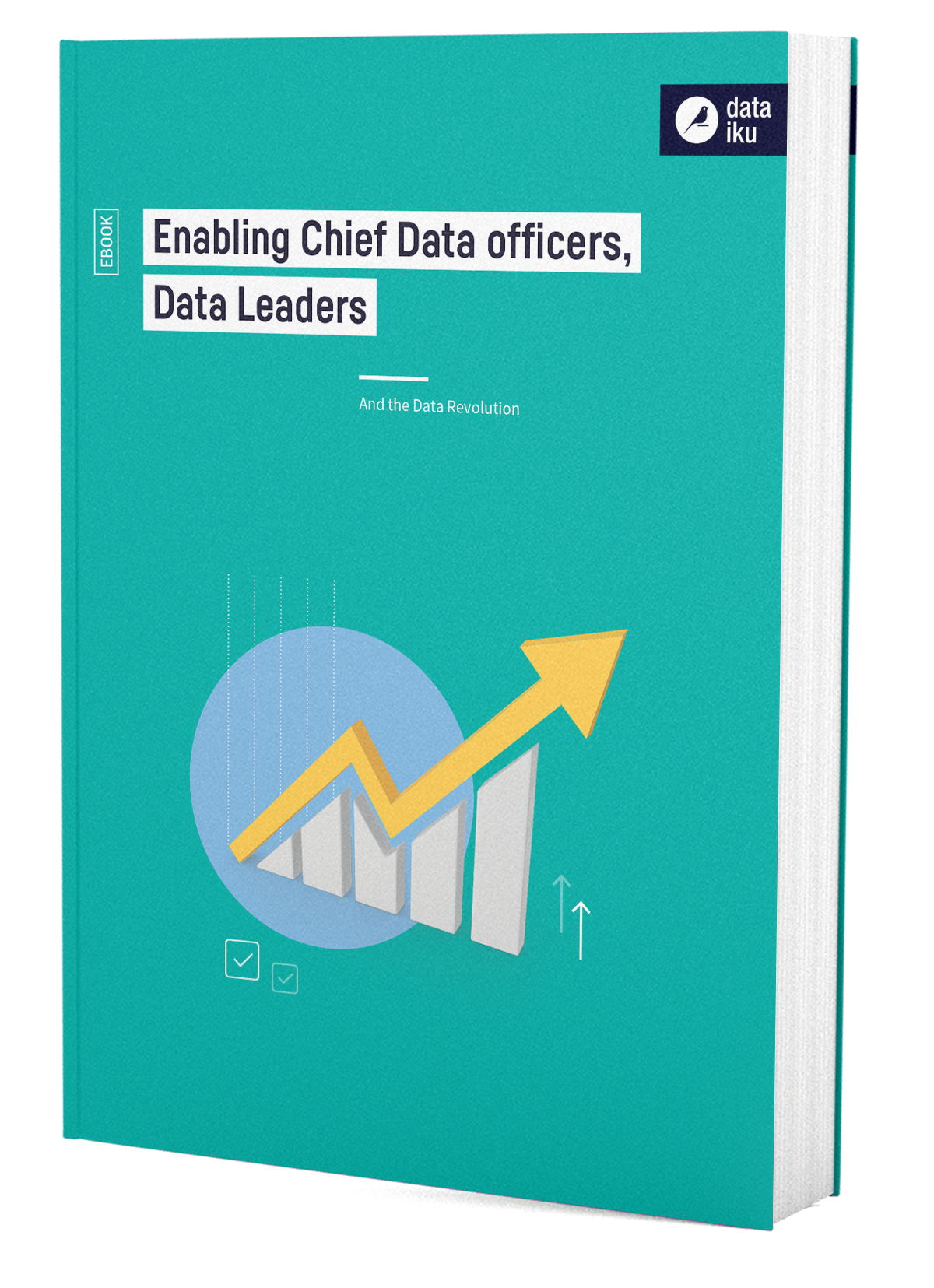 3D Cover Enabling Chief Data Officers CDOs
