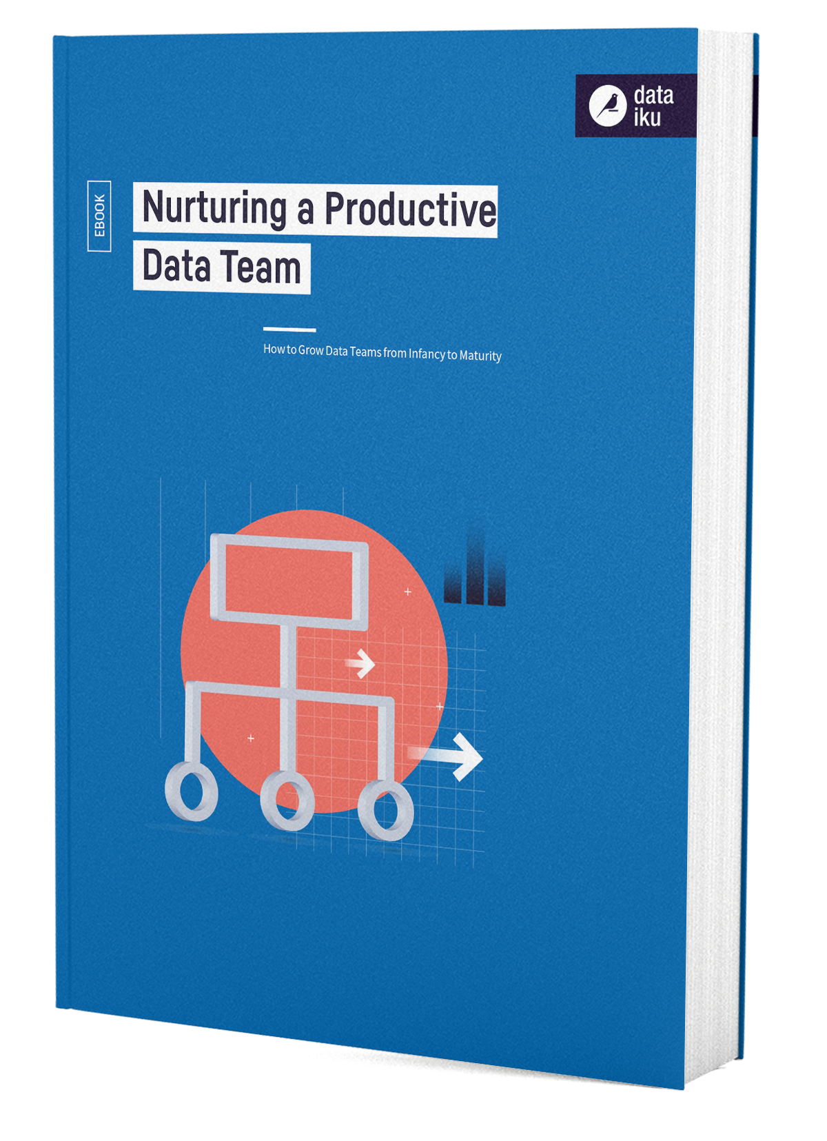 3D Cover Nurturing a Productive Data Team