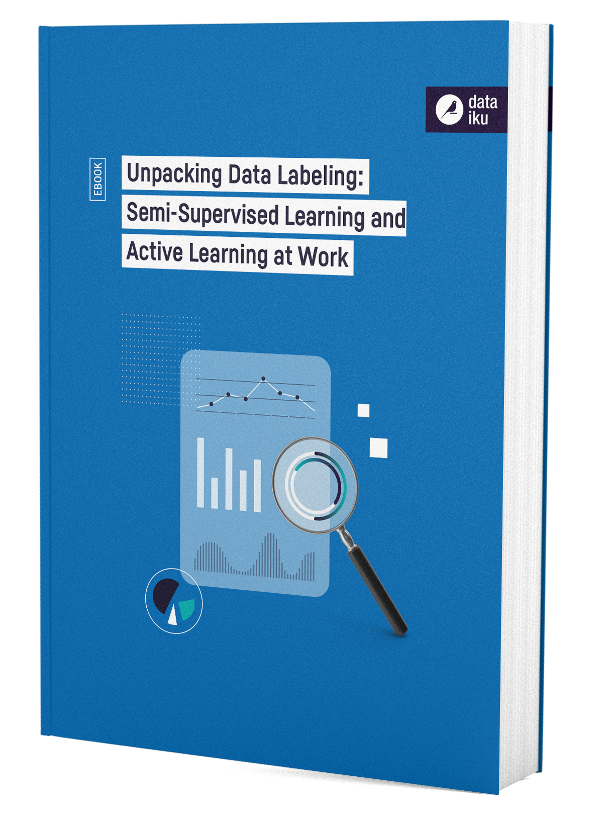 DTKU_Unpacking-Data-Labelling_Ebook_WEB.pdf