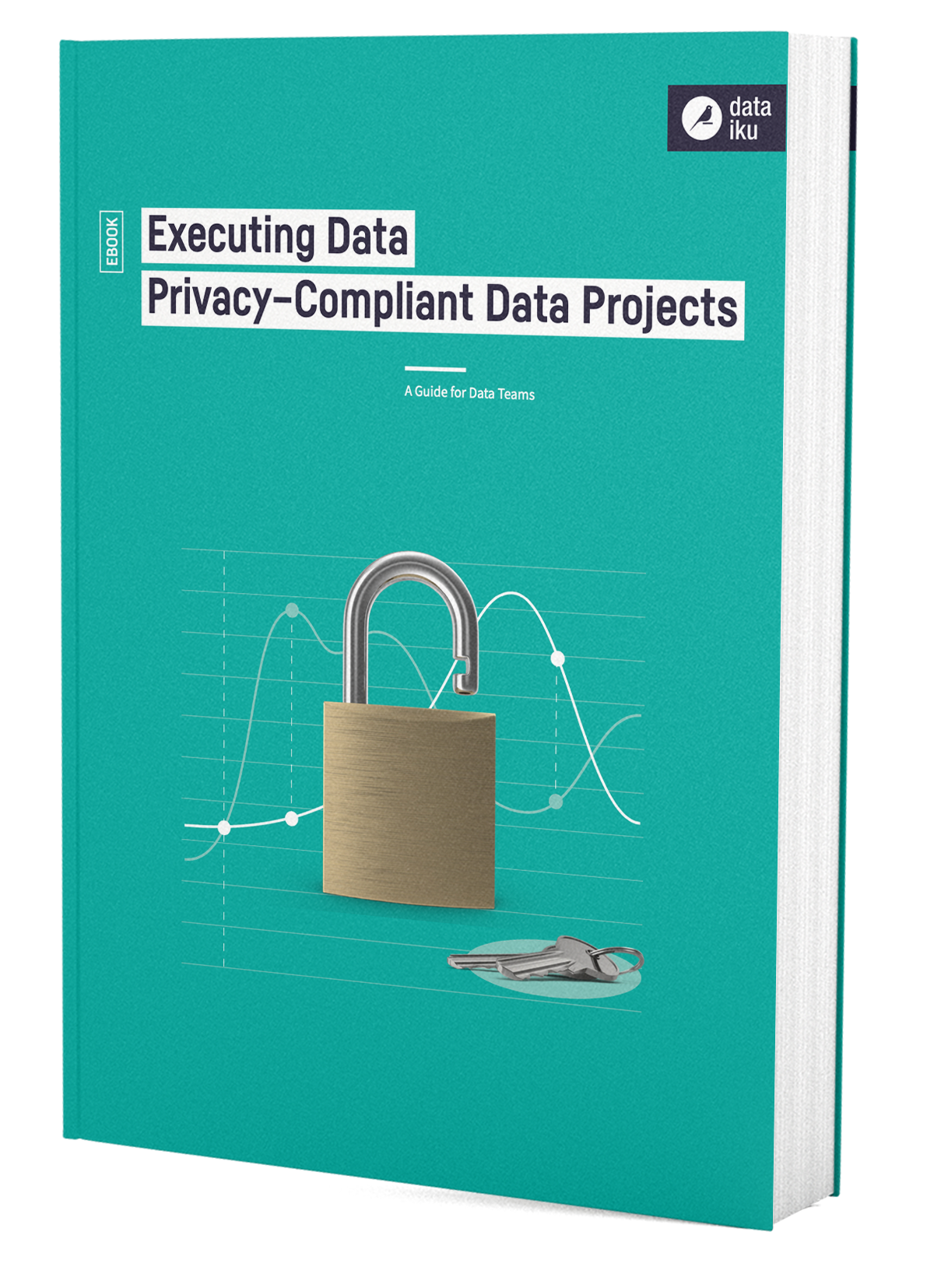 Executing Data Privacy-Compliant Data Projects